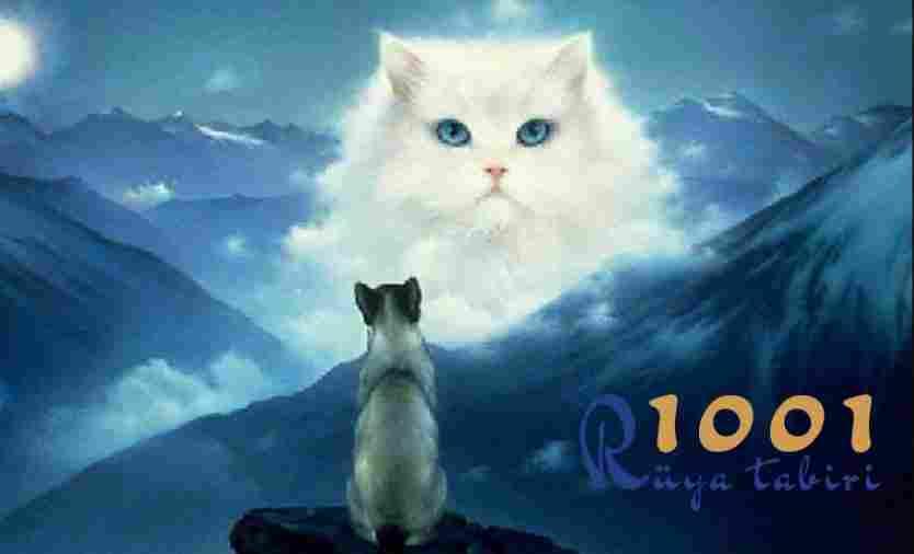 Rüyada kedi görmek ne demek - Rüya tabirleri ansiklopedisi