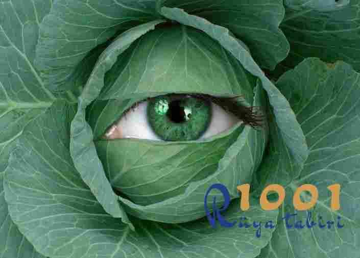 Rüyada lahana görmek lahana yemek-beyaz mor lahana almak