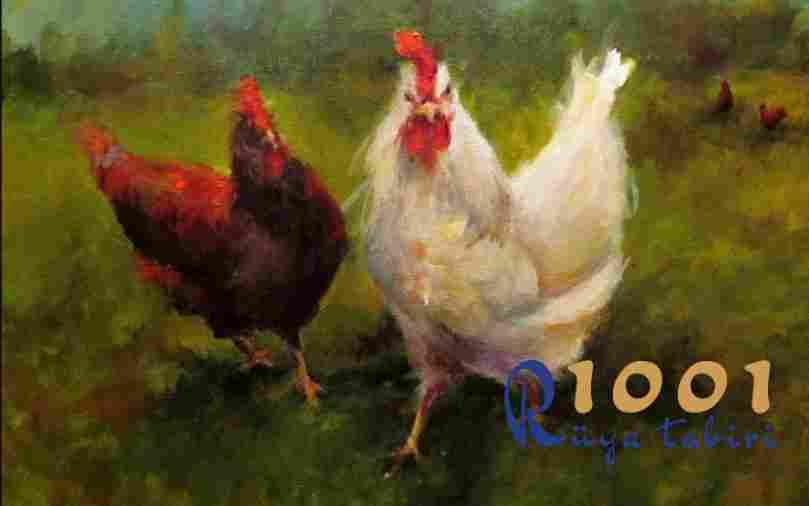 Rüyada Tavuk Görmek Neye İşarettir? 1001ruyatabiri.com