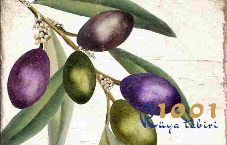 Rüyada zeytin görmek veya zeytin yemek - Büyük rüya tabirleri sözlüğü
