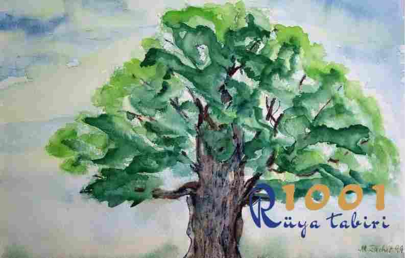 Rüyada Ağaç Görmek - Diyanet Rüya Tabirleri www.1001ruyatabiri.com