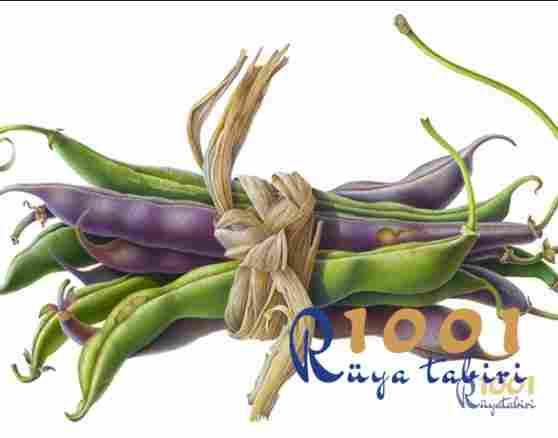 ruyada fasulye gormek-ruyada kuru fasulye gormek www.1001ruyatabiri.com