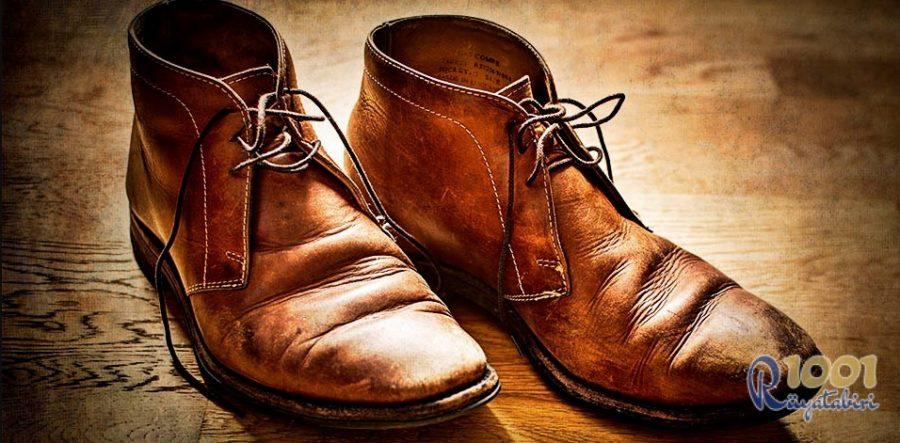 Rüyada Kahverengi Ayakkabı Görmek-Rüyada Kahverengi Yılan Görmek