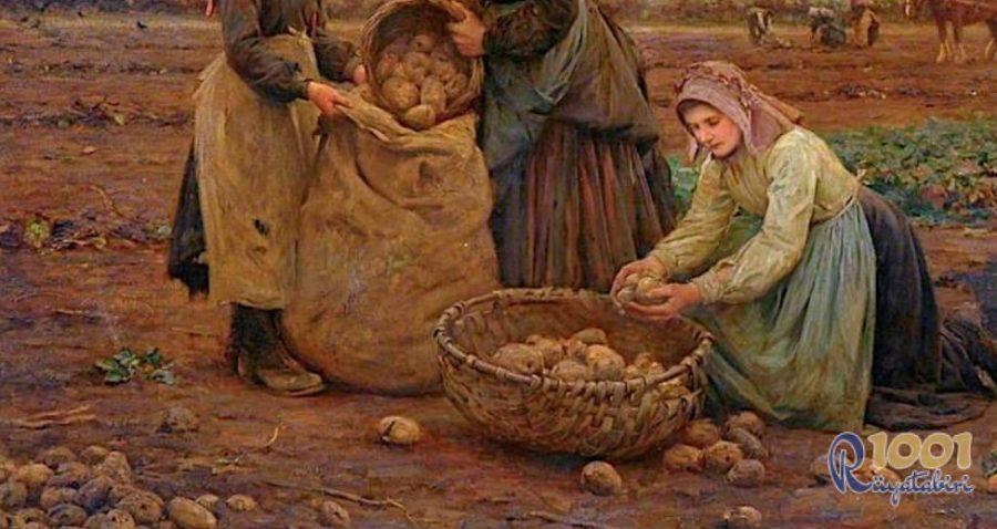 Rüyada Patates Yemeği Görmek-Rüyada Patates Ekmek