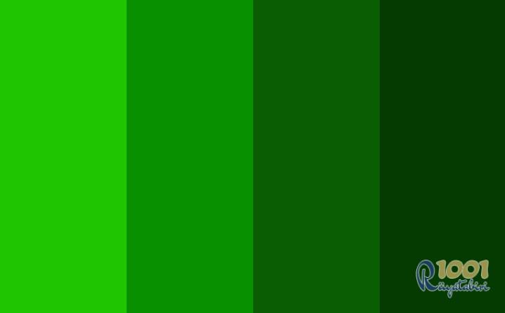 Rüyada Yeşil Renk Görmek-Rüyada Yeşil Giymek www.1001ruyatabiri.com