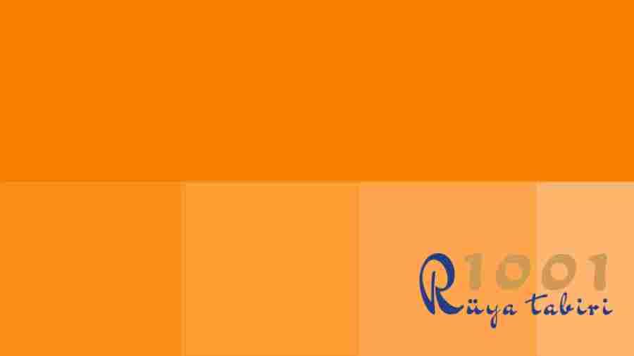Ruyada Turuncu Gormek Ne Demek-Turuncu Renkli Bir-sey Ne Anlama Gelir-dini-diyanet-islami ruya tabirleri-sorgulama