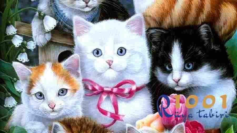 Ruyada-Kedi-Gormek-Diyanet-ve-islami-Ruya-Tabirlerine-Ne-Demek-ne-anlama-gelir-kedi-sevmek-siyah-kedi-kedi-isirmasi-saldirmasi-yavru kedi-1001ruyatabiri