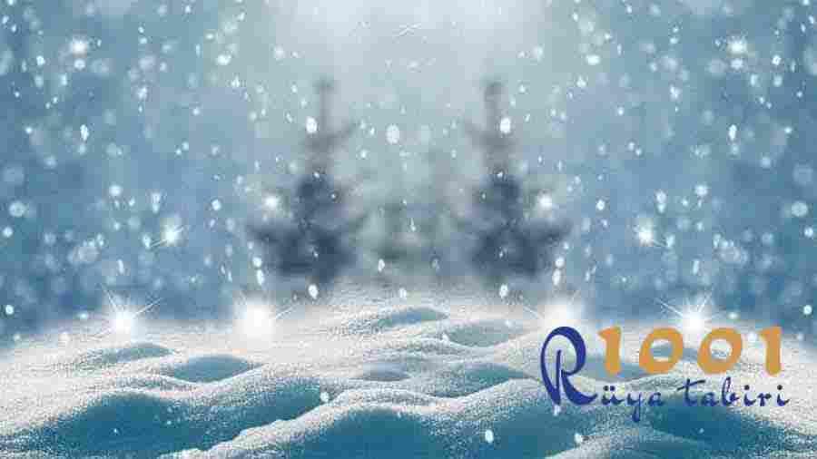 ruyada kar yagmasi gormek-ruyada kar gormek-yagdigini-kar yagisi-kartopu-kar yemek diyanet ruya tabiri sorgulama ne demek-1001ruyatabiri