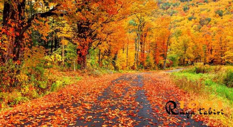 Rüyada Sonbahar Görmek, Sonbaharda Olmak