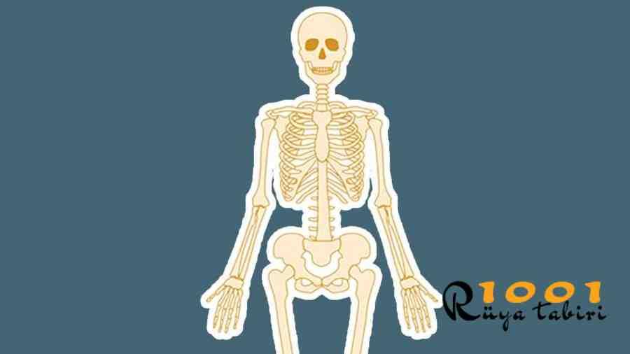 Ruyada-iskelet-Gormek-iskelet-ile-Konusmak-ne-demek-iskeletin-canlandigini-kol-gormek-1001ruyatabiri